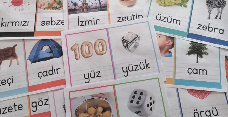 """""""ZÇGŞCP"""" Grubu Resimli Kelime Kartları"""